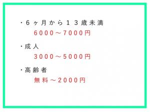 インフルエンザ 料金表