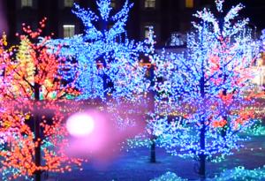 神戸イルミナージュ 赤とブルーのイルミネーション