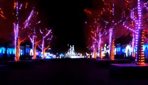 神戸イルミナージュ 光のカーニバル