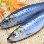 魚をおいしく冷凍保存・解凍する方法!賞味期限はどれくらい?