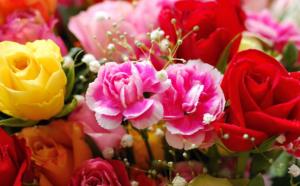 明るい色合いの花束