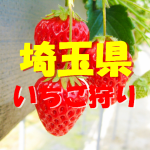 埼玉県いちご狩りおすすめ人気ランキング2019と口コミ情報。