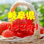 岐阜県いちご狩りおすすめ人気ランキング2018と口コミ情報