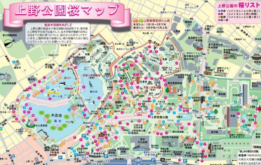 上野公園 桜マップ