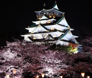 大阪城 桜
