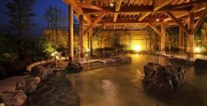 甲賀温泉 やっぽんぽんの湯