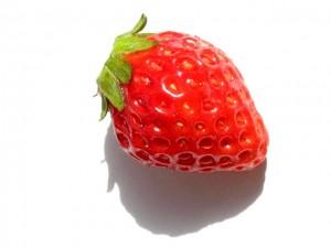 イチゴ 一粒