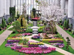 兵庫県立淡路夢舞台温室 奇跡の星の植物館