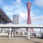兵庫県いちご狩りおすすめ周辺観光スポット・宿泊情報はここ!