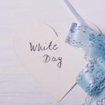 ホワイトデーのお返しに手作りチョコを贈るなら?おすすめはコレ!