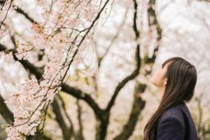 桜を見る女子学生