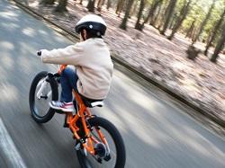自転車 移動手段