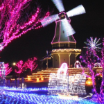 茨城県いちご狩りおすすめ周辺観光スポット・宿泊情報はここ!