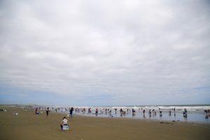 潮干狩り 海岸