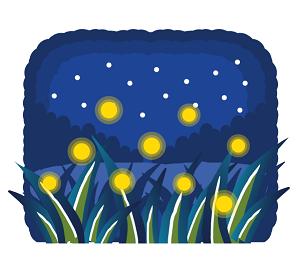 蛍の光 草むら 星空 絵