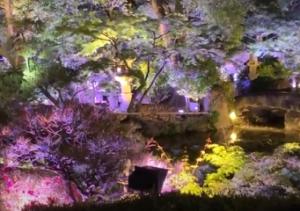 ガーデンイルミネーション 太閤園