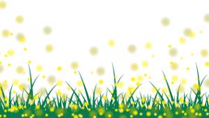 草むら 蛍の光 イラスト
