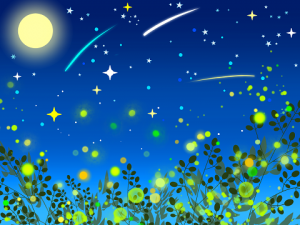 星空 月 蛍の光 草むら イラスト