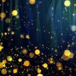 椿山荘ほたるの夕べ2018の見頃や時間帯。入場や鑑賞は無料?