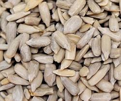 ひまわりの種 栄養素