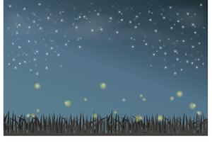 ホタル イラスト 夜空 草むら