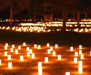 奈良燈花会