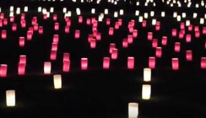 奈良燈花会 浮雲園地