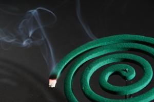 蚊取り線香 煙