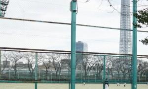 台東リバーサイドスポーツセンター野球場