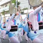 高円寺阿波踊り2018の日程と見どころ。人気連や観賞ポイントは?