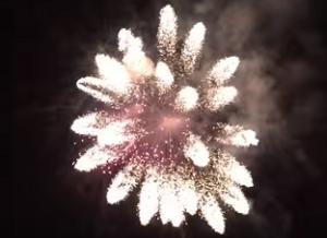打ち上げ花火の開花