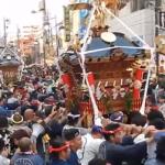 秦野たばこ祭り 神輿渡御
