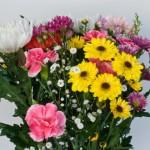 お彼岸の花はいつ供えればいいの?種類や相場は?