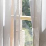 カーテンのカビ取り方法。洗濯での上手な落とし方とは?