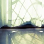 部屋の湿気対策。原因は?カビやカビ臭さを防ぐおすすめ除湿法