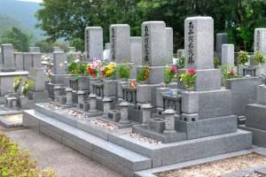 お墓 お彼岸 お花