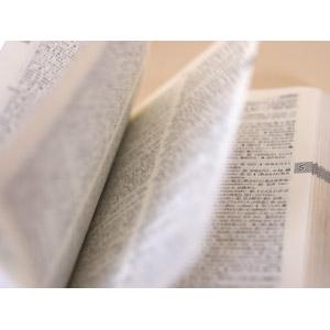 英語 辞書