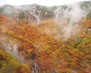 霧がかかった千畳敷カールの紅葉