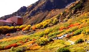 千畳敷カール 紅葉 登山