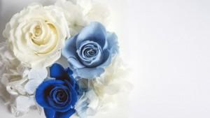 ブルーと白の花束