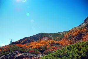 千畳敷の紅葉と爽快な青空