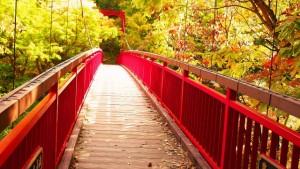 定山渓 紅葉 二見吊橋