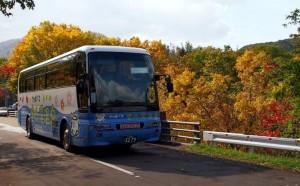 定山渓 紅葉 バス