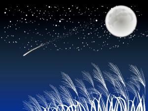 満月 流れ星 イラスト