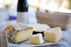 チーズ たんぱく質