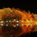 愛知茶臼山高原の紅葉2016。見頃とライトアップ。渋滞回避は?