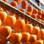 干し柿の作り方。簡単に上手に作るコツは?焼酎でカビ対策!