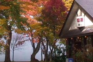 紅葉 喫茶 十和田湖