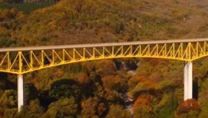八ヶ岳 黄色い橋 紅葉