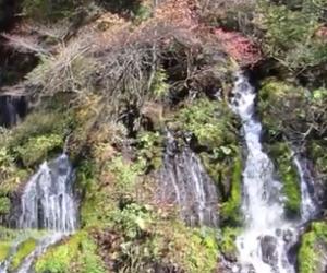 吐竜の滝 紅葉